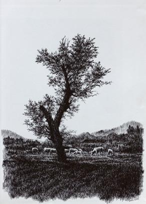 图辑:钢笔画与线条魔力