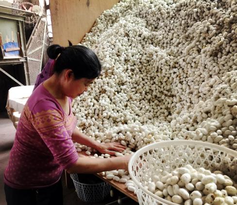 中国创新的正确姿势:链接酷炫和传统